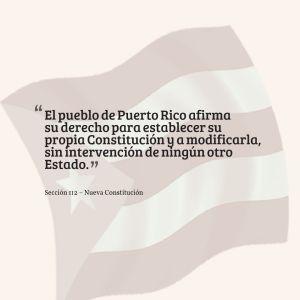 nueva-constitucion